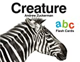 Creature ABC Flash Cards, , 1452111812