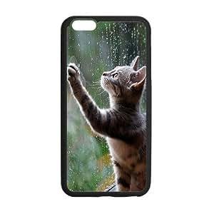 Cute Cat Personalized Custom Phone Case For iPhone 6 Plus 5.5 Plastic And TPU Case Cover Skin