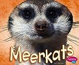 Meerkats, Jody Sullivan Rake, 1429612495