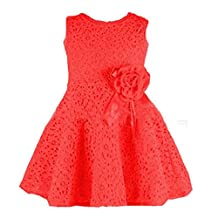 Changeshopping(TM) Girls Kids Full Lace Floral One Piece Princess Party Dress