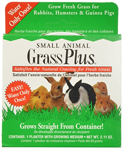 MiracleCorp/Gimborn Small Animal Grass Plus, 60-Gram