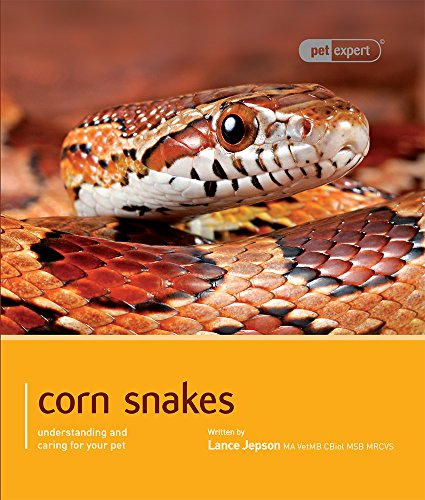 corn for pets - 1