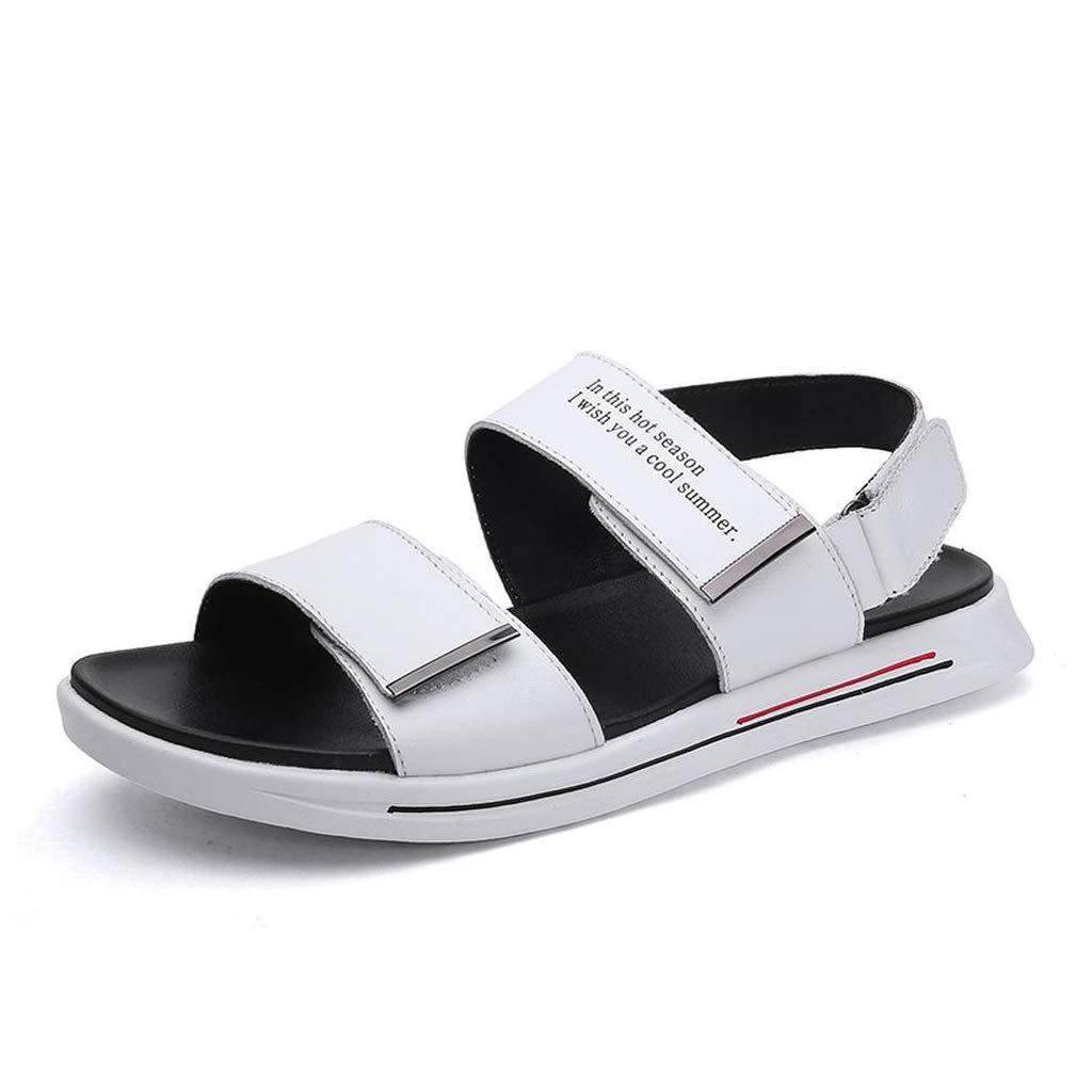 blanc blanc blanc DANDANY Chaussures pour Hommes D'été Nouvelles Chaussures Chaussures De Jeunes Classiques Chaussures De Conduite en Extérieur Chaussons Blancs Chaussures De Plage en Plein Air blanc-43(265mm) bd1