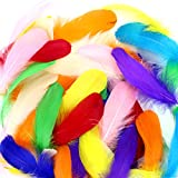 Coceca 150pcs Large Colorful Feathers for Arts and Crafts