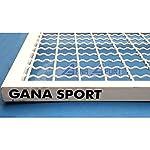 Gana-Sport-Produzione-Avanzata-per-Scala-Spalliera-Svedese-Agganciabile-A-Muro-Accessori-Spalliere