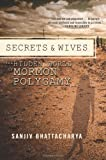 Secrets and Wives, Sanjiv Bhattacharya, 1593765215