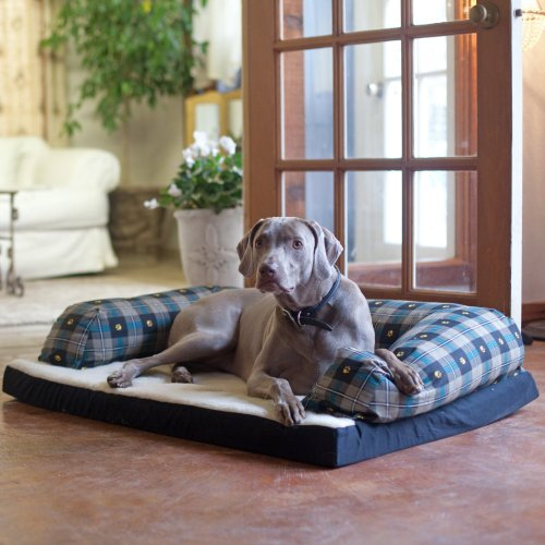 Beasleys Couch Dog Bed – Teal Pawprint Plaid, My Pet Supplies