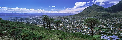 Posterazzi PPI154818L Aerial View of a City from Signal Hill Town Western Cape Province South Africa Poster Print, 36 x 12 (Aerial View Of Cape Town South Africa)