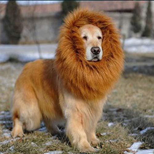 Florenceenid Halloween Role Play Pet Dog Costume Lion Mane W