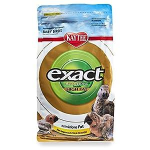 Kaytee Exact Handfeeding High Fat 5LB 73