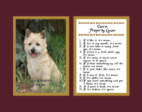 Cairn Terrier Property Laws Wall Decor Humorous Pet Dog Saying Gift