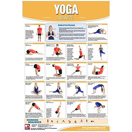 Productive Fitness Poster Yoga Exercises Non Laminated