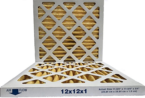 12x12x1 Air Filter, MERV 11, MPR 1000, FPR 7, Pleated AC Furnace Air Filter, (Pack of 2) Filters, USA Manufactured
