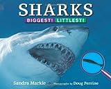Sharks, Sandra Markle, 1590788737