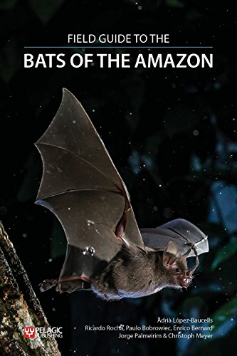 Species Bat (Field Guide to the Bats of the Amazon (Bat Biology and Conservation))