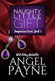 Naughty Little Gift -- A Temptation Court Contemporary Romance: Temptation Court: Passion in New York City