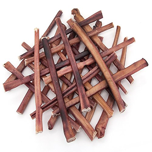 GigaBite 12 Inch Odor-Free Bully Sticks (25 Pack) - USDA & FDA Certified All Natural, Free Range Beef Pizzle Dog Treat, Healthy Dental Dog Chew - By Best Pet Supplies