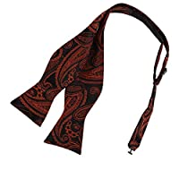 EBA1B07-08 Multicoloured Best Microfiber paisley for Mens Self Bowtie By Epoint