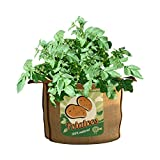 PANACEA PRODUCTS 30 gallon Grow Bag Potatoes For Sale