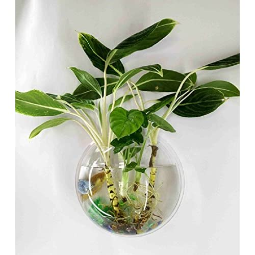 Chic Mini Wall Mounted Flower Vase Acrylic Wall Hanging Planters