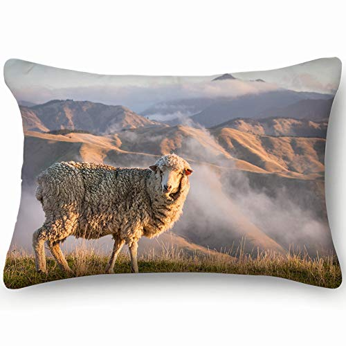 best bags Closeup Grazing Merino Sheep Mountains Sunset Animals Wildlife Nature Pillowcases Decorative Pillow Covers Soft and Cozy, Standard Size 14