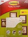 Tools & Hardware : Command Damage Free Picture and Frame Hanging, Large Strips (30 Pairs)