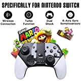 Switch Controller for Nintendo Switch/Switch Lite