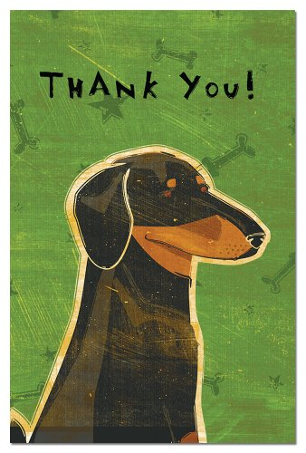 Tree-Free Greetings Eco-Notes Thank You Card Set, 4 x 6 Inches, 12-count Cards with Envelopes, Black and Tan Dachshund (92982) 12 Boxed Notes