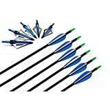 "I-sport 32"" Archery Hunting Fiberglass Arrows with 3 Blade Broadheads 100 Grain Compound Bow Recurve Bow Arrows 6pk"