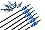 I-sport 32' Fiberglass Target Hunting Arrows with Screw-in 100 Grain Broadheads for Compound Bow or Traditional Bow 6pcs