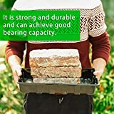 10 Pack Strong Plant Growing Trays, Extra Strength