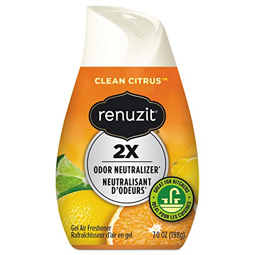 Case Sunburst - Renuzit 35000CT Adjustables Air Freshener, Citrus Sunburst, 7 oz Cone (Case of 12)