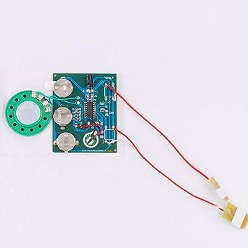 Amazon.com: Módulo de grabación de voz con control de doble ...