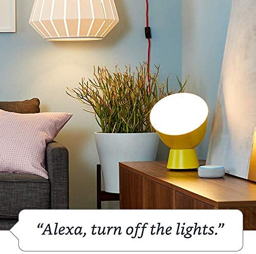 Amazon Smart Plug, works with Alexa – A Certified for Humans Device 51Nq05NuwxL