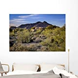 Wallmonkeys Adobe Style Home Southwest Wall Mural Peel and Stick Graphic (60 in W x 40 in H) WM363562