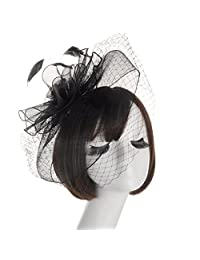 Women's Feather Mesh Veil Fascinator Cocktail Party Hair Clip Derby Hat