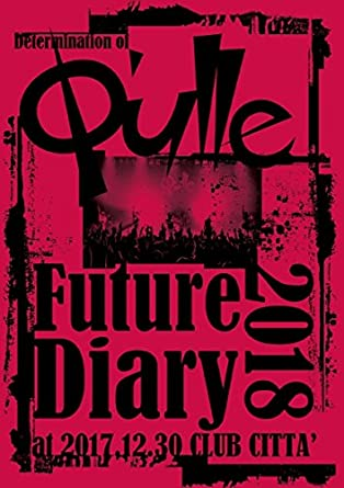 amazon determination of q ulle future diary 2018 at 2017 12 30