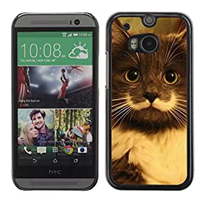 TaiTech Hard Protective Case Cover - Hamilton Hipster Cat Moustache Longhair - HTC One M8 by runtopwell