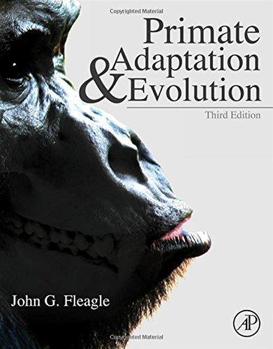 Primate Adaptation+Evolution