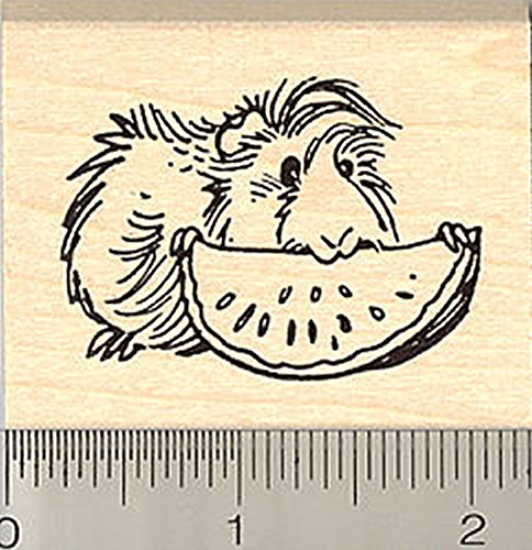 Guinea Pig Eating Fruit Rubber Stamp