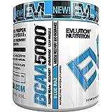 Evlution Nutrition BCAA5000 Powder (30 Servings, Blue Raz) 5 Grams of Premium BCAAs