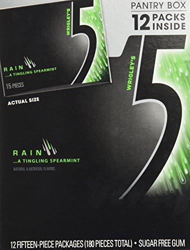 Wrigley's 5 Rain Spearmint Sugar Free Gum Pantry Box - 12 Packs of 15 Pieces