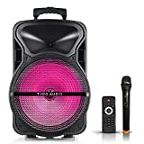 TM 15'' PA System Speaker 60W Peak To 500W Wireless Portable Speaker With MP3/USB/TF/FM Radio/KARAOKE Function, Wheels& Hole Designed For Speaker Stand, LED Party Light, Wireless Microphone And Remote Control (15 Inch)