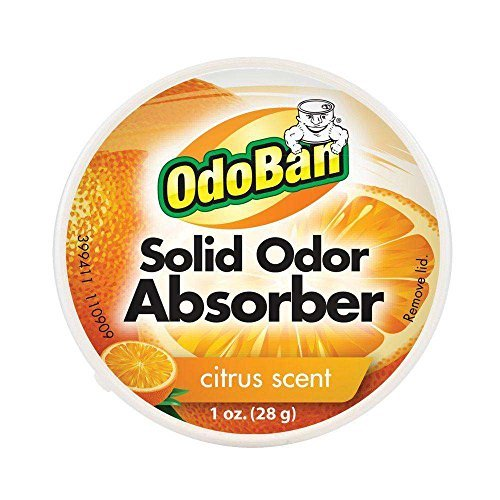 (OdoBan Citrus Solid Odor Absorber, 1 oz.)