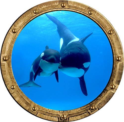 Whale Porthole - 12