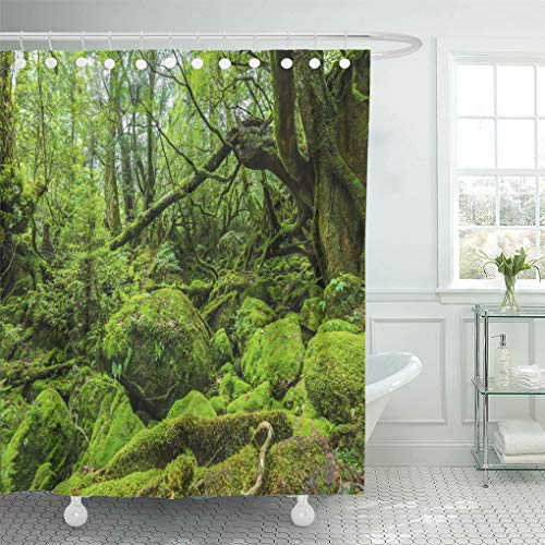 Semtomn Shower Curtain Mossed Forest in Shiratani Unsuikyo Ravine Yakushima Island Japan Shower Curtains Sets with 12 Hooks 60 x 72 Inches Waterproof Polyester Fabric