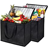 NZ Home XL Insulated Reusable Grocery Bags, Sturdy Zipper, Foldable, Washable, Heavy Duty, Stands Upright, Completely Reinforced Bottom & Handles (2 Pack, Black)