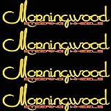 Morningwood 4 Piece Sticker Vinyl Decal Logo Stickerbomb For Car/Trunk/Hood for Toyota FJ Cruiser