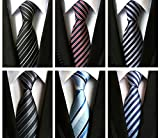XTAPAN Men's 6 PCS Classic Neckties Woven Jacquard Polyester Silk Business Neck Ties Set 57.1''x3.1'' Stripe Style 2