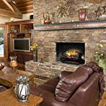 Dimplex Revillusion 25-Inch Electric Fireplace Log Set (RLG25) from DIMPLEX